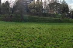 Panorama_RZT2_small